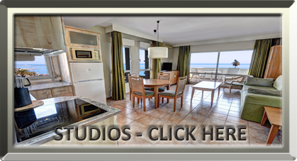 Studio Property-for-Sale-in-Benalmadena